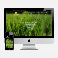 small business website package